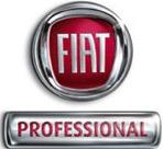 logoFiatProfessional